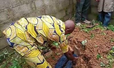 Man beheads, removes internal organs of okada rider in Niger