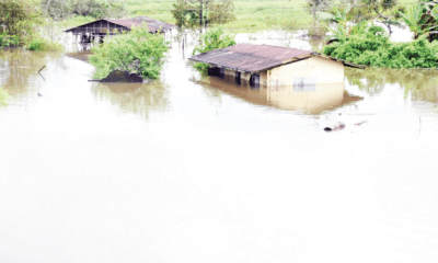 At the mercy  of ravaging flood