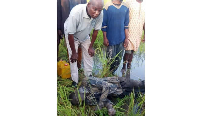 Benue: Flood kills middle-aged man, submerges 37 communities in Agatu - New Telegraph Newspaper