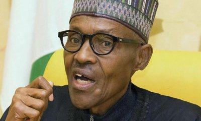 Buhari May Completely Wreck Nigeria Before 2023 -Northern Elders