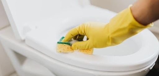 https://www.pexels.com/photo/crop-faceless-housekeeper-cleaning-toilet-bowl-4239036/