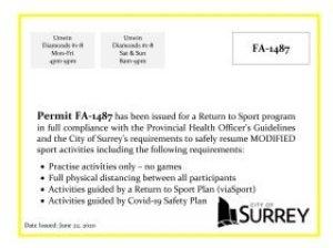 City of Surrey FA-1487 Display permit for Newton Baseball Association