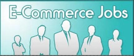 Finding an e-commerce job
