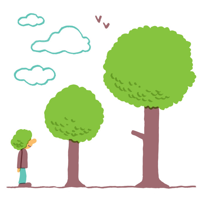 A new study found that an additional ten trees on a given block corresponded to a one-per-cent increase in how healthy nearby residents felt.
