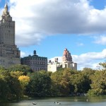 Things to Do in Central Park: spots, food, activities and more