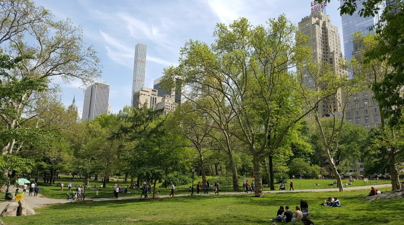 central park guide top places to visit food activities more