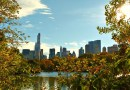 Central Park with Kids: Things to Do