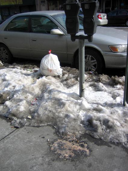 Parking meter and puke