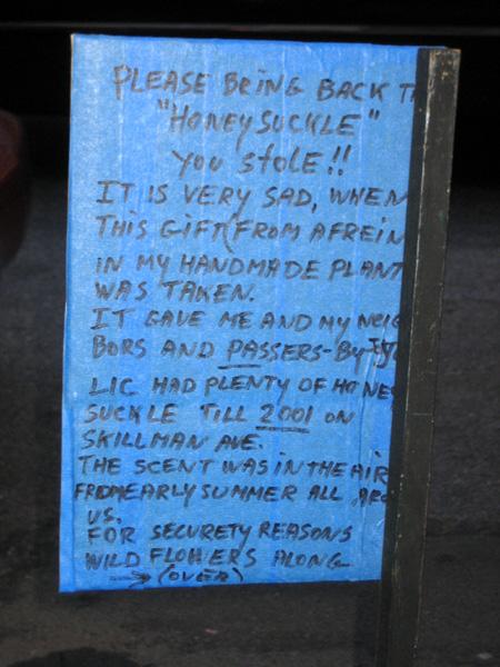 Honeysuckle Diary, Part 1
