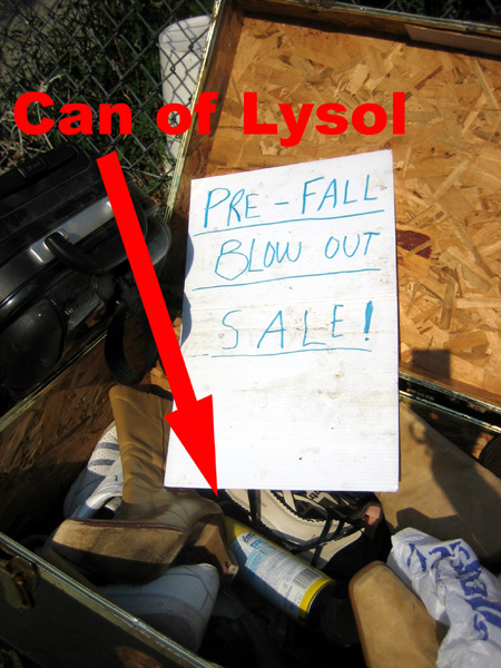 Trunk with Lysol