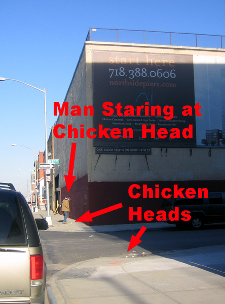 Man comtemplating chicken heads