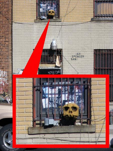 Second Floor Skull