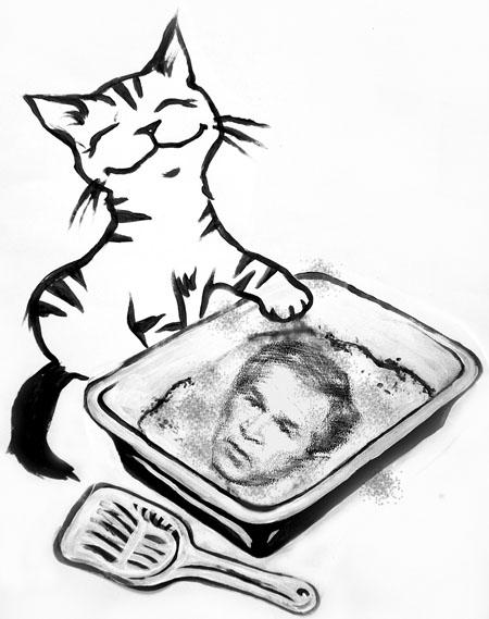 kittylitternys