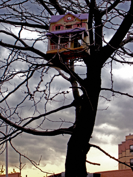 treehousenys
