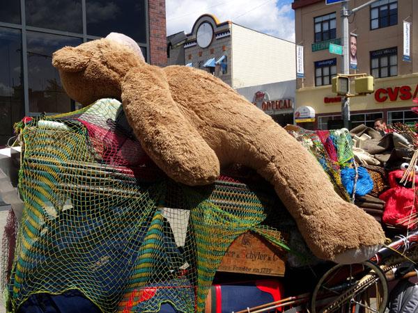 Bear nys