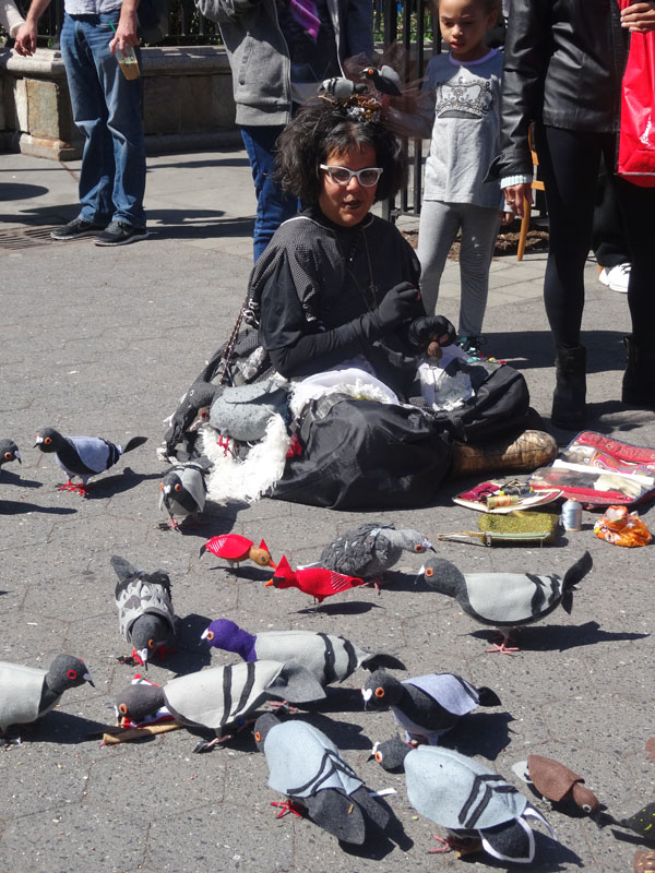 The Pigeon Lady nys