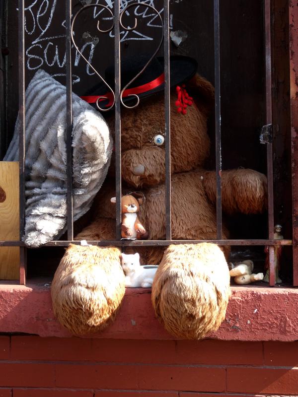 Prison Bear June 10 2015 nys