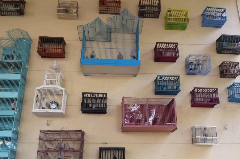 Levat, cages