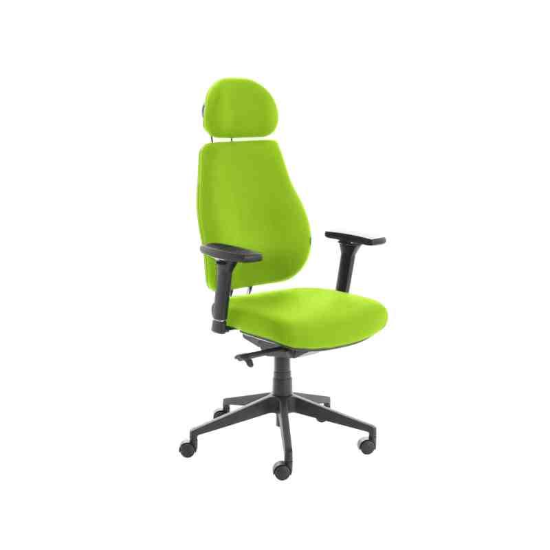 Chiro Plus Lite With Headrest Fully Upholstered Myrrh Green