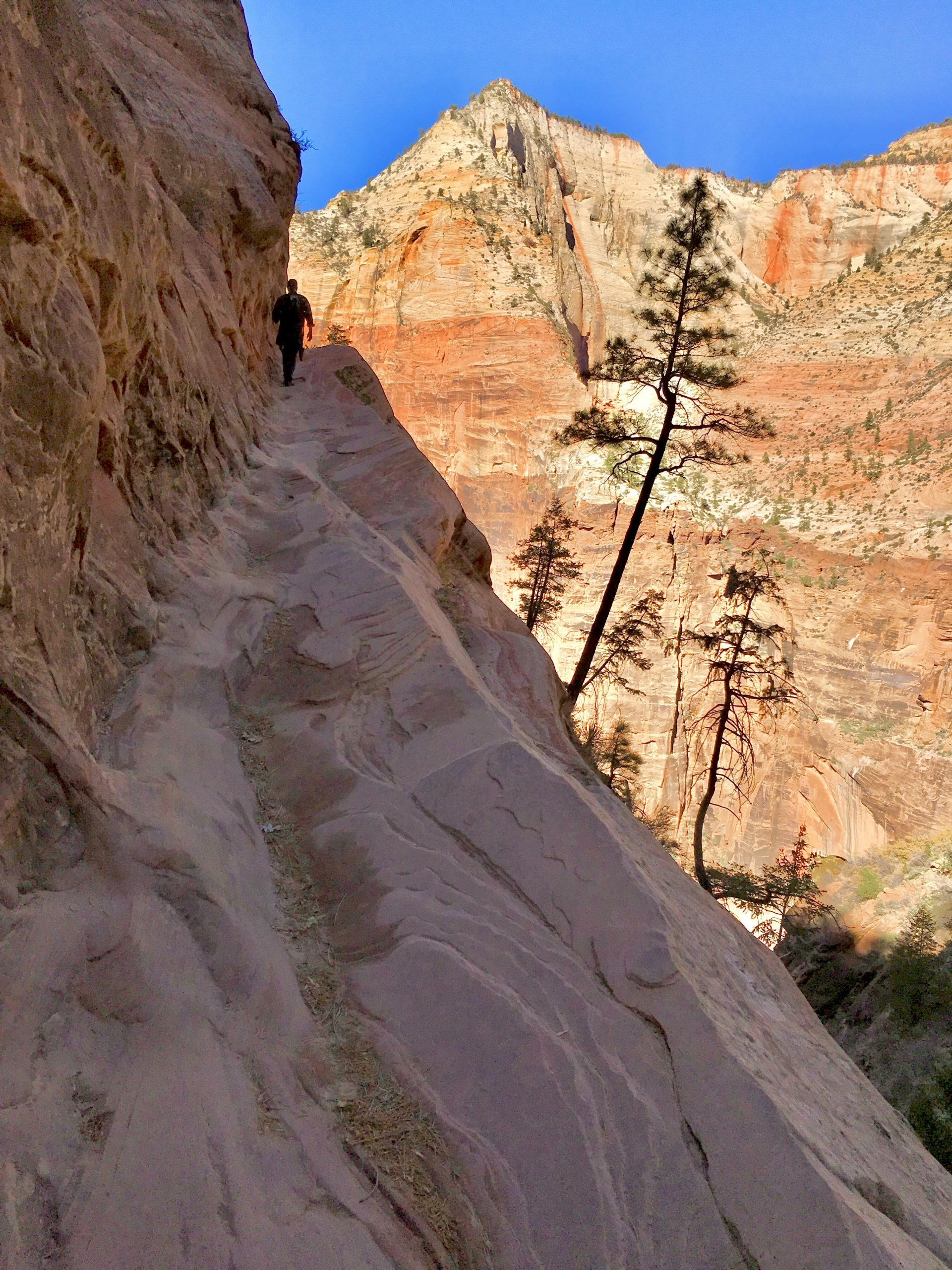 Hidden Canyon Trail at Zion National Park
