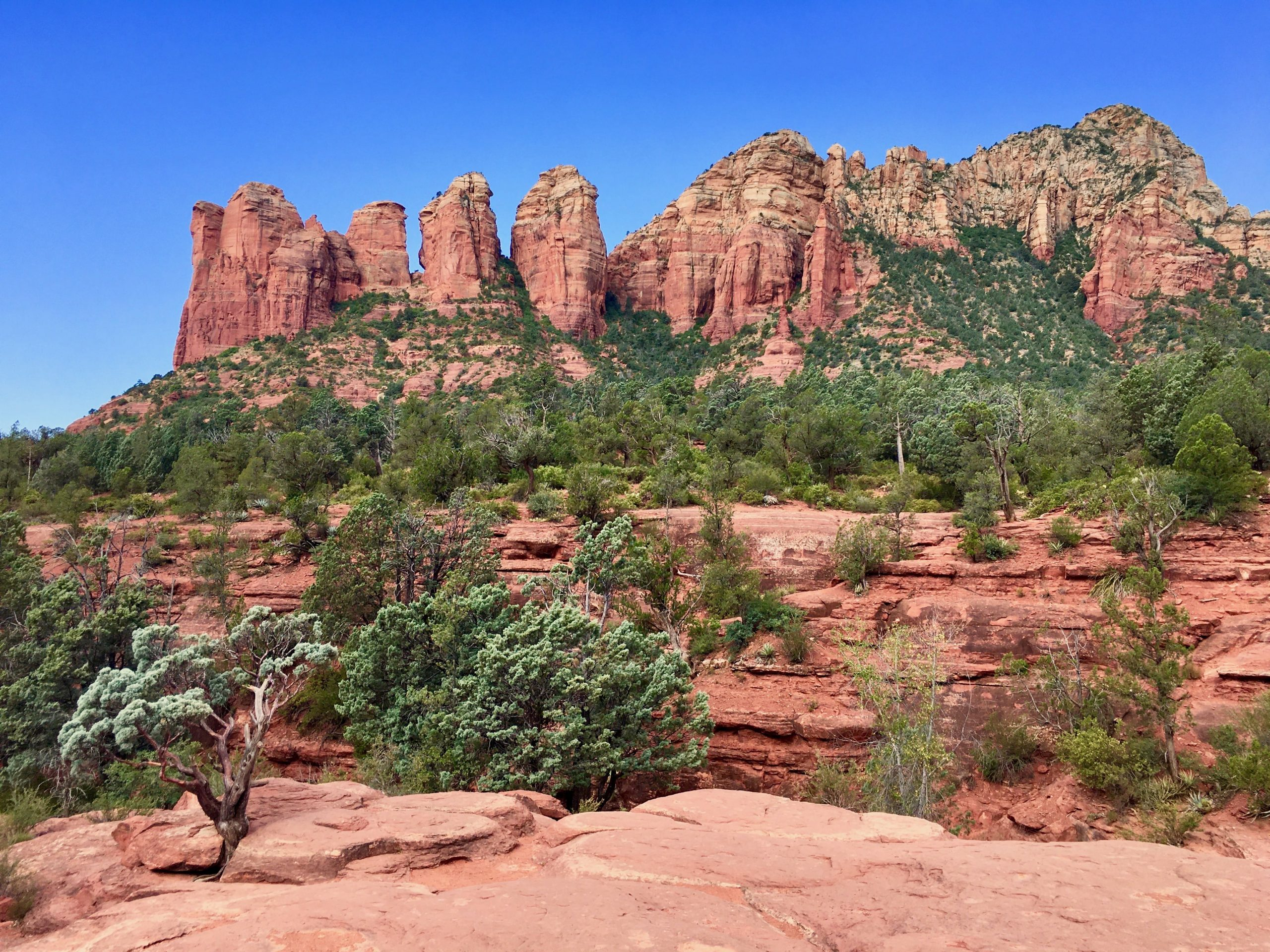 Red Rock Views along the Sedona Soldier Pass Trail