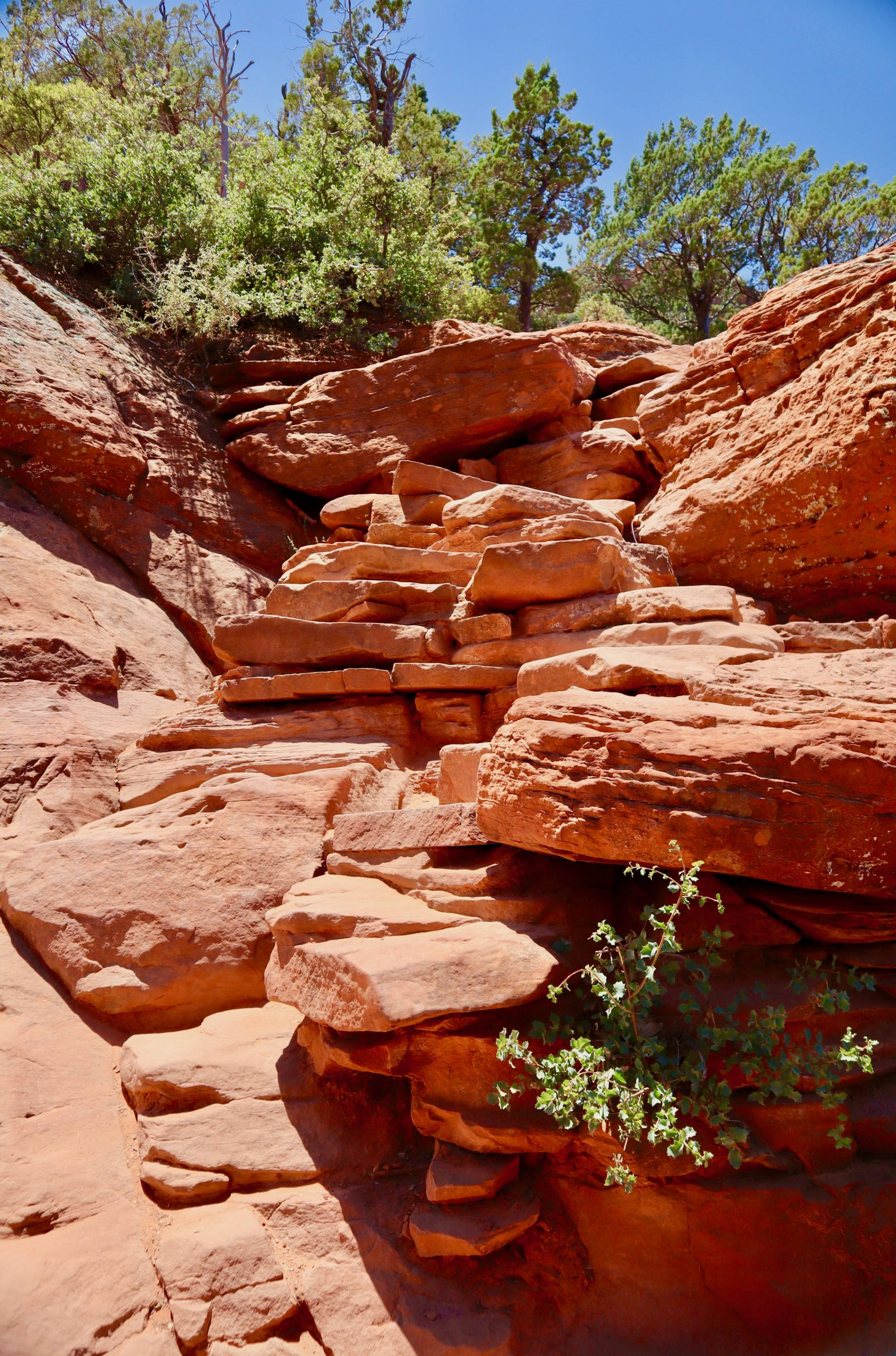 Steps leading up to Devil's Bridge in Sedona, AZ