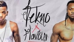 Tekno disappoints Abuja fans, Flavour & Styl Plus thrill