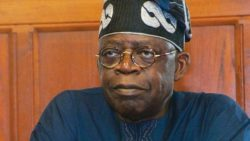 2019: Withdraw support for Buhari or risk influence in Yoruba land, Adeniyi warns Tinubu