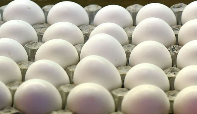U.S. recalls 200 million eggs over food poisoning