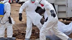 Three Ebola patients escape quarantine