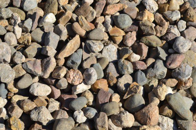 Large Cedar Rock