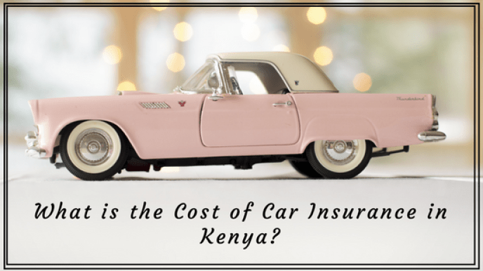 How much Car Insurance Cost in Kenya