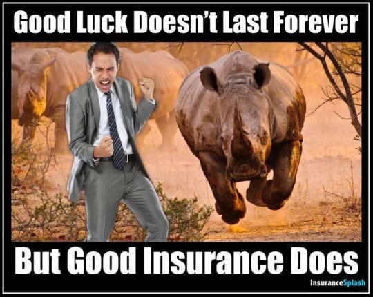 humor car insurance