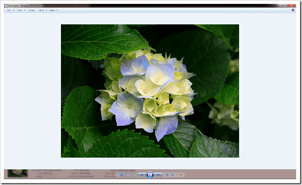 2012 12 21 1706 001 thumb - How To Fix Windows Photo Viewer Displaying Yellow Or Orange Tint For White and Transparent Images