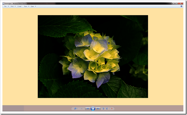 2012 12 21 1706 thumb - How To Fix Windows Photo Viewer Displaying Yellow Or Orange Tint For White and Transparent Images