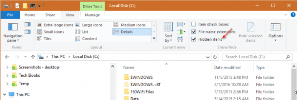 File Explorer - hidden option