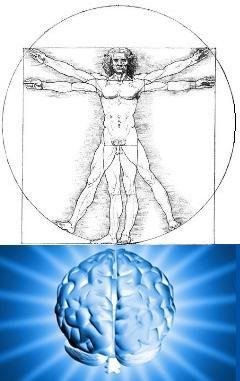 Нейролингвистика, квантовая психология и шизофрения