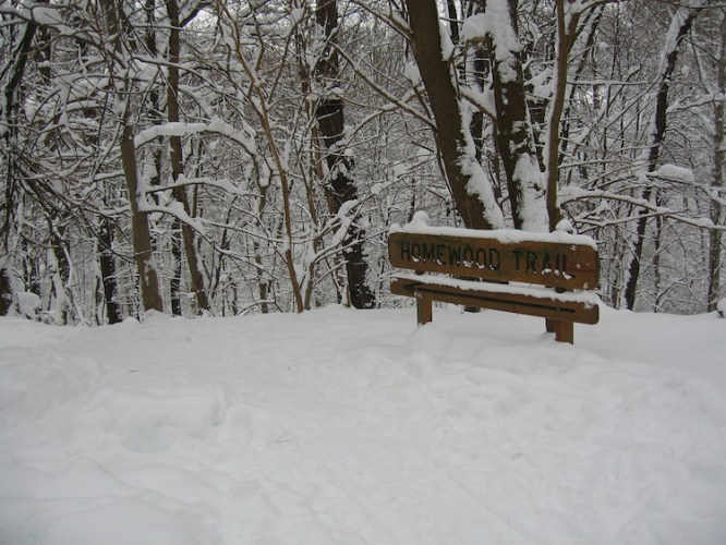 homewood trail