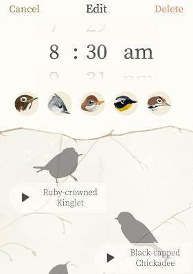 Screenshot of Dawn Chorus alarm.