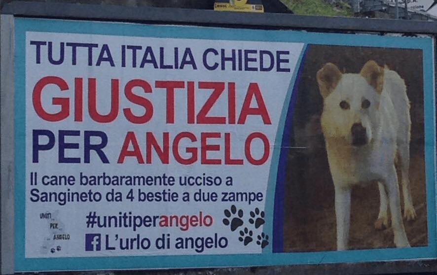 Risultati immagini per giustizia per angelo