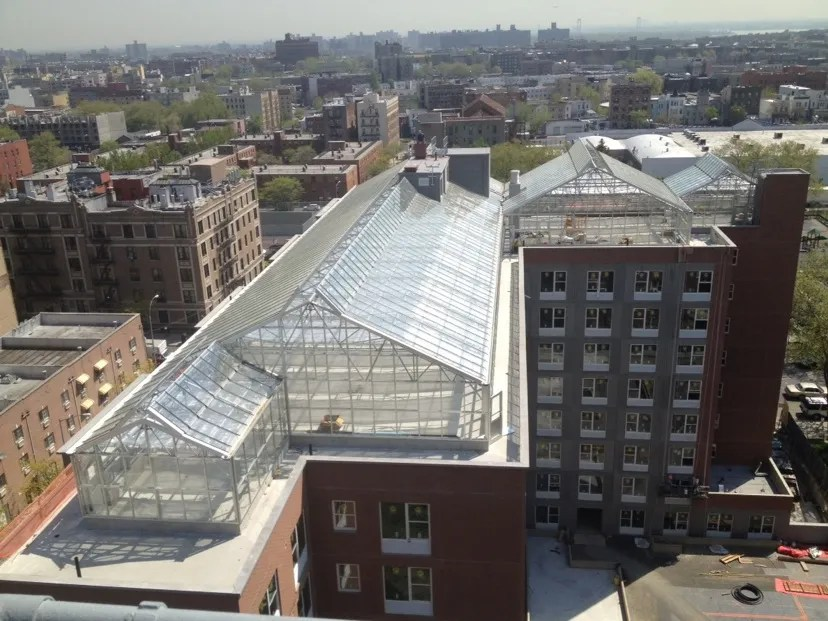IMG 8403 - THE MOST AMAZING ROOF TOP GLASS HOUSE IDEAS AND PICTURES