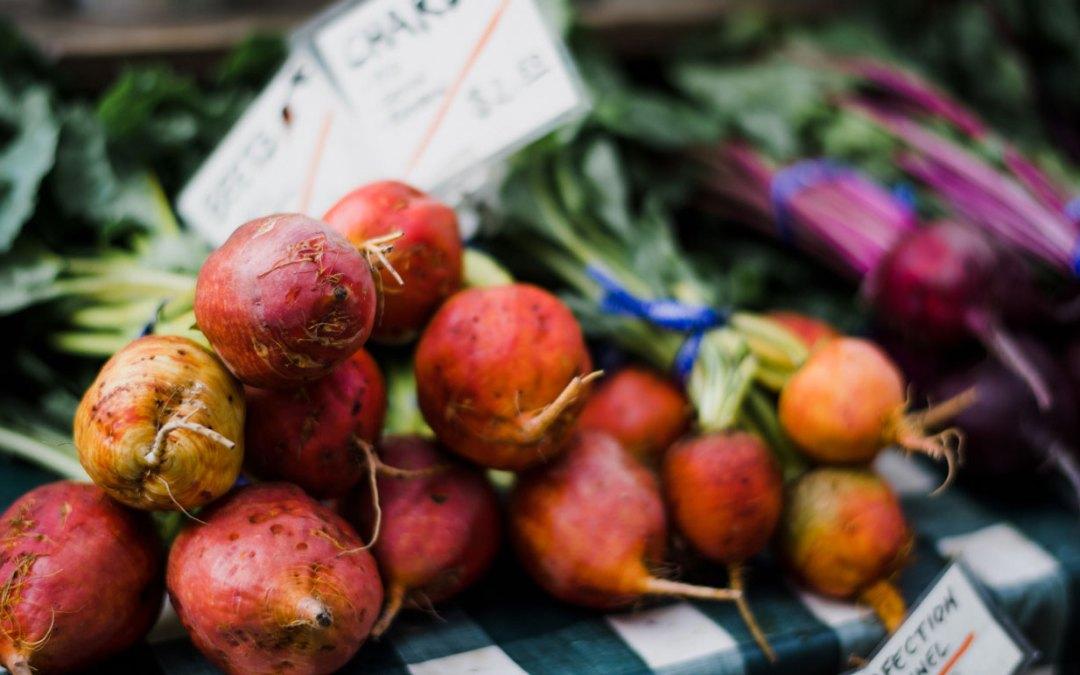 Nezinscot Farm | Food For Thought | Seasonal Salads