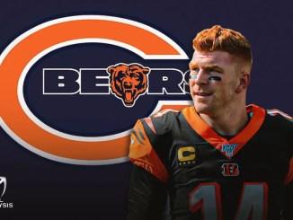 Andy Dalton, Bears