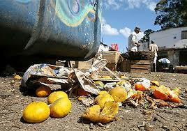 Metade dos alimentos vira lixo.