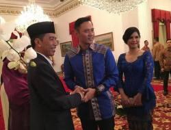 Ini Dia Tujuan di Balik Safari Politik Agus Yudhoyono