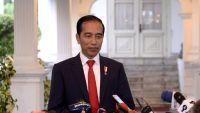 MUI Minta Jokowi Berkantor di Papua