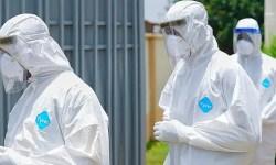 Naija Coronavirus Update Today