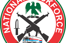 NATFORCE Logo