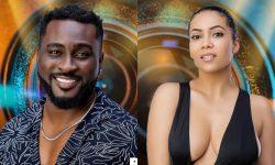 Big Brother Naija The Wild Cards Fake Housemates