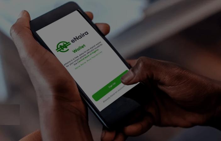 E Naira Website Platform Portal Link